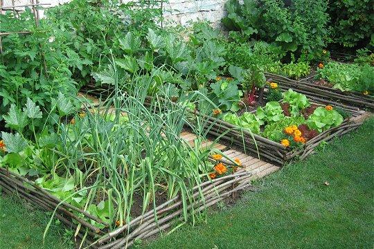 Lysadis castelactiv 39 for Agencement de jardin potager